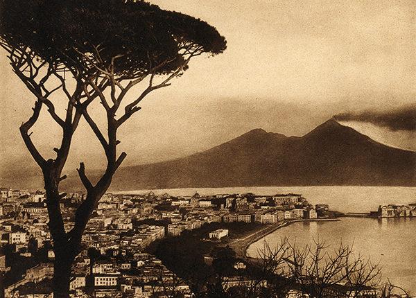 Napoli il pino di Posillipo è stato l'albero più famoso d'Italia