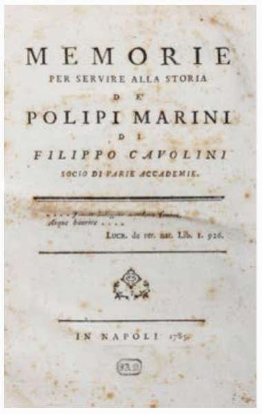 Napoli via Filippo Cavolini. La strada adiacente via Foria è dedicata ad uno scienziato napoletano. il suo nome legato al processo di caprificazione.