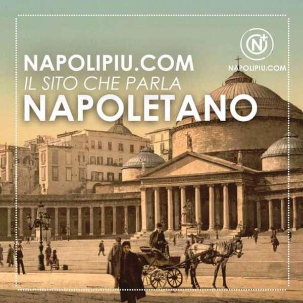 Chi siamo? Napolipiu.com è formato da giornalisti e appassionati che nuotano nell'immenso mare del calcio Napoli e della cultura napoletana.