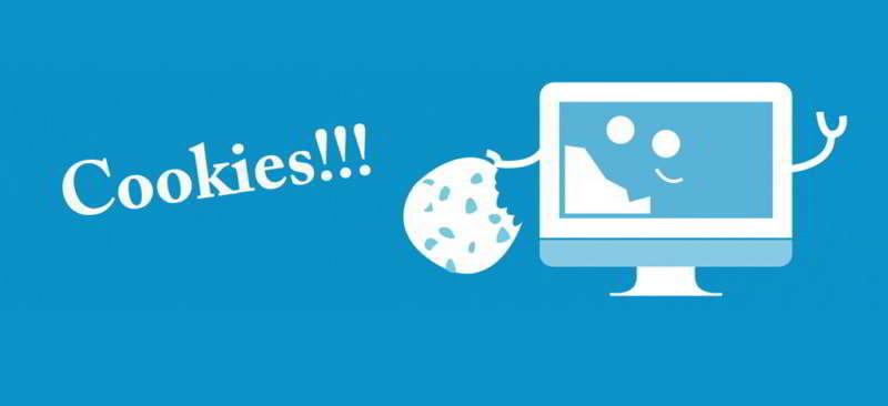 Informativa sui cookie o cookie policy. Un cookie è un piccolo file di testo che viene memorizzato sul computer di chi visita un sito Web allo scopo di memorizzare informazioni relative al browser con cui stai effettuando la visita. Segue l'informativa dettagliata allegato all'informativa sulla privacy.