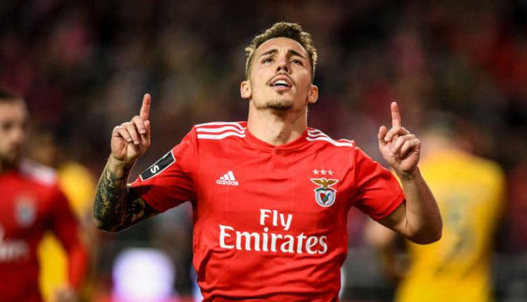 Il Napoli su Grimaldo del Benfica. Giuntoli ci pensa