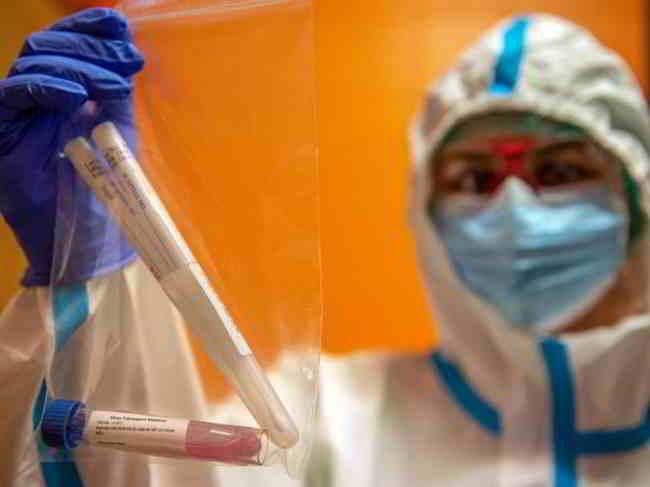 pulcini lazio coronavirus sta morendo